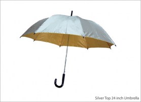 Silver Top 24 inch Umbrella