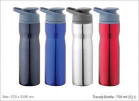 Trendy Bottle V21 750 ml